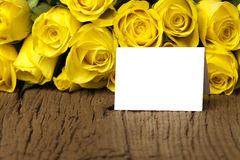 Yellow roses with a writable card Stock Images