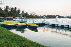 Yellow rowboats Stock Image