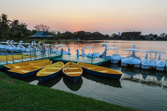 Yellow rowboats. Anchored at harbor in evening Royalty Free Stock Photography