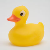 Yellow rubber duck. On a white background royalty free stock photos