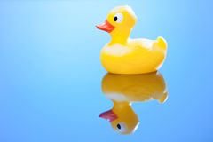 Yellow rubber duck Royalty Free Stock Images