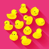 Yellow rubber duck Stock Image