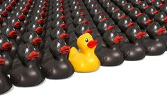 Yellow rubber duck among black rubber ducks. Leader concept, 3D rendering. Yellow rubber duck among black rubber ducks. Leader concept, 3D royalty free illustration