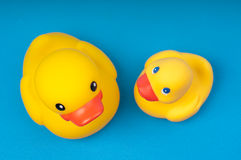 Yellow rubber duck on blue background water Stock Photography