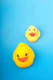 Yellow rubber duck on blue background water Stock Image