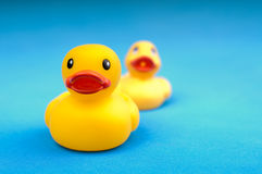Yellow rubber duck on blue background water Stock Photo