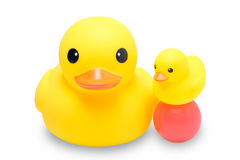 Yellow rubber duck with colorful ball. In isolate white background Stock Photography