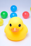 Yellow rubber duck with colorful ball. In white background Stock Photography