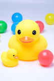 Yellow rubber duck with colorful ball. In white background Stock Photo