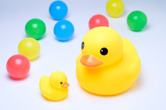 Yellow rubber duck with colorful ball. In white background Stock Image
