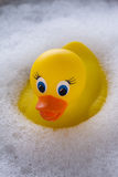 Yellow rubber duck floating in soap suds Royalty Free Stock Image