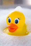 Yellow rubber duck floating in soap suds Royalty Free Stock Photo