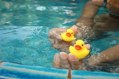 Yellow rubber duck in hands at swimming pool. Royalty Free Stock Images