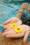 Yellow rubber duck in hands at swimming pool. Stock Images