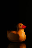 Yellow rubber duck with his reflection in glass, black background stock image