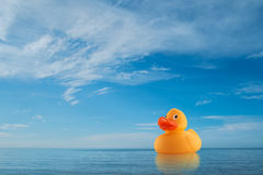 Yellow rubber duck on horizon at sea Stock Image