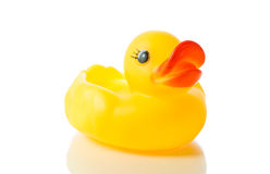 Yellow rubber duck isolate Stock Images