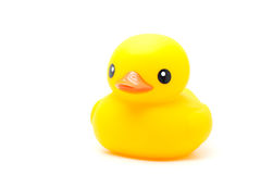 Yellow rubber duck Stock Photos