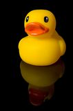 Yellow Rubber Duck Reflection Royalty Free Stock Images