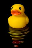 Yellow Rubber Duck Reflection with water ripples