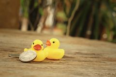 Yellow rubber duck with Thai Bath money. Royalty Free Stock Photography
