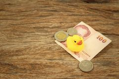 Yellow rubber duck with Thai Bath money. Stock Photography