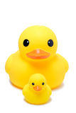 Yellow rubber duck toy in isolate white background Royalty Free Stock Photo
