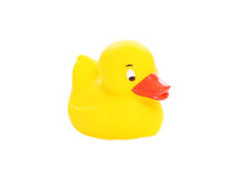 Yellow rubber duck toy isolated Royalty Free Stock Images