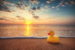 Free Yellow Rubber Duck Toy On The Beach During Beautiful Sea Sunrise Royalty Free Stock Photography - 126287227