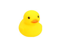Yellow rubber duck. On white background Royalty Free Stock Image