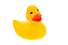 Yellow rubber duck on white background isolated Stock Images