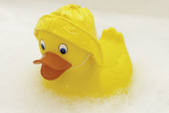 Yellow Rubber Duckie Stock Image