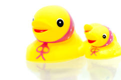 Yellow rubber duckies Stock Photography