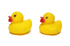 Yellow rubber ducklings Royalty Free Stock Photography
