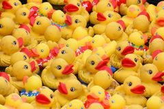 Yellow rubber ducks. Used in a carnival game royalty free stock photo
