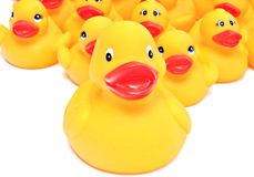 Yellow rubber ducks Royalty Free Stock Photography