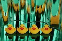 Yellow rubber ducks on green metallic shimmers background. Image royalty free stock image