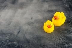 YEllow rubber ducks stock photo