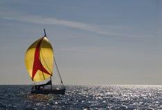Yellow sails Royalty Free Stock Photos