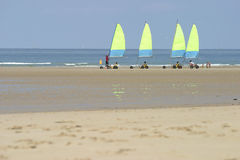 Yellow sails. Stock Photography