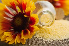 Yellow salt. Zholty flower Royalty Free Stock Images