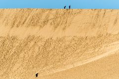 Yellow sand and blue sea and sky. Large area yellow sand and blue sea and sky with people  at tottori sandune in japan a large sand area Stock Photography