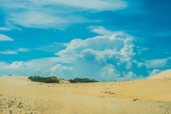 Yellow sand in the desert, Vietnam Royalty Free Stock Images