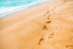 Yellow sand with footprints in the sand and turquoise color waters at swimming area of sea - Jeju Island, South Korea. Yellow sand with footprints in the sand Royalty Free Stock Photos