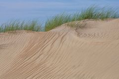 Yellow sand and green grass Royalty Free Stock Photos
