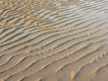 Yellow sand moved by the wind Royalty Free Stock Photography