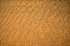 The yellow sand surface of the desert. The wind sweeps the sand, Royalty Free Stock Photography