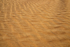 The yellow sand surface of the desert. The wind sweeps the sand, Stock Image
