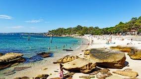 Shark Beach, Nielsen Park, Vaucluse, Sydney, Australia. Yellow sand Sydney Harbour Shark Beach, at Nielsen Park, Vaucluse, Sydney, NSW, Australia. Shark Beach is stock image