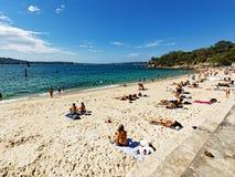 Shark Beach, Nielsen Park, Vaucluse, Sydney, Australia. Yellow sand Sydney Harbour Shark Beach, at Nielsen Park, Vaucluse, Sydney, NSW, Australia. Shark Beach is royalty free stock photo